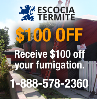 $100 Off Fumigation