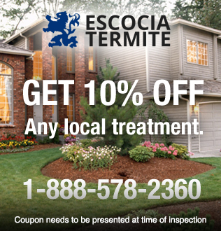 10% Off local treatment